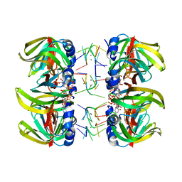 Molmil generated image of 1m8v