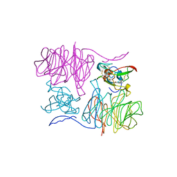 Molmil generated image of 1mae