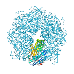 Molmil generated image of 1mdl