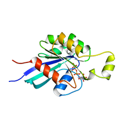 Molmil generated image of 1mh1