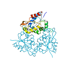 Molmil generated image of 1mvn