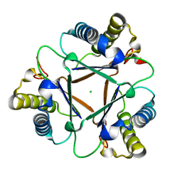 Molmil generated image of 1mww