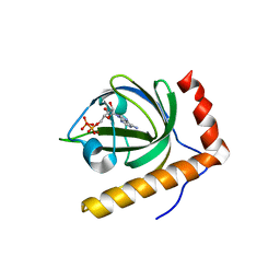 Molmil generated image of 1n08
