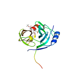 Molmil generated image of 1n1l