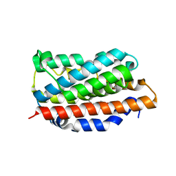 Molmil generated image of 1n45