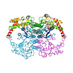 Molmil generated image of 1n7h