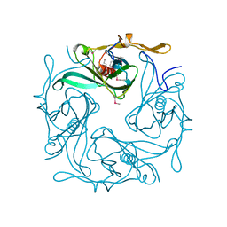 Molmil generated image of 1n9p