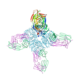 Molmil generated image of 1ncb