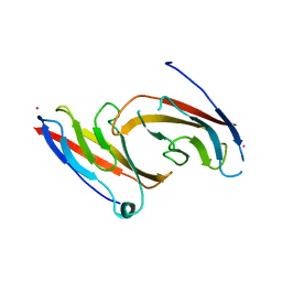 Molmil generated image of 1nch