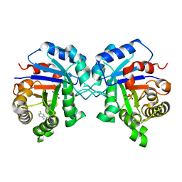 Molmil generated image of 1nf0