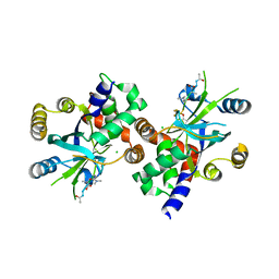 Molmil generated image of 1njt