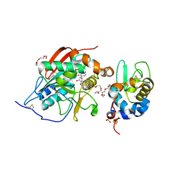 Molmil generated image of 1nkh