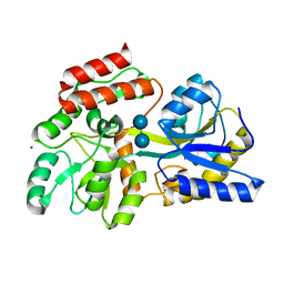 Molmil generated image of 1nl5