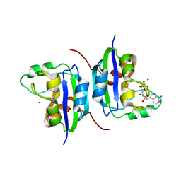 Molmil generated image of 1nlk