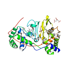 Molmil generated image of 1nml