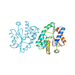 Molmil generated image of 1nn5