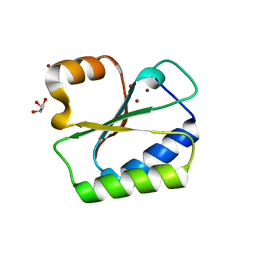 Molmil generated image of 1no5