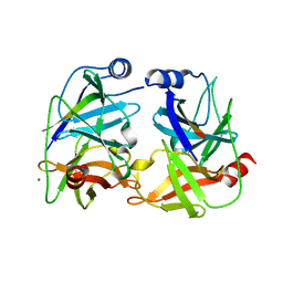Molmil generated image of 1ns3