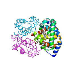 Molmil generated image of 1ns9