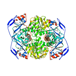 Molmil generated image of 1nto