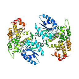 Molmil generated image of 1nve