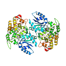 Molmil generated image of 1nvf