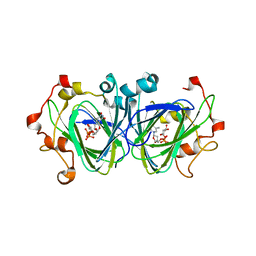 Molmil generated image of 1nzc