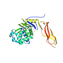 Molmil generated image of 1nzo