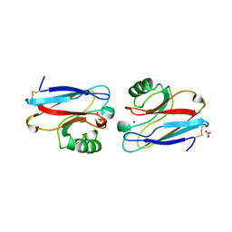 Molmil generated image of 1nzr