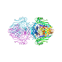 Molmil generated image of 1o92