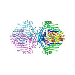 Molmil generated image of 1o9t