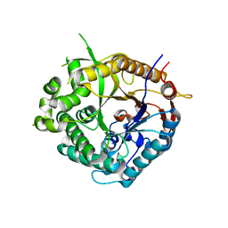 Molmil generated image of 1od0