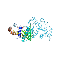 Molmil generated image of 1opr