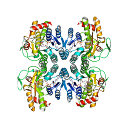 Molmil generated image of 1orr