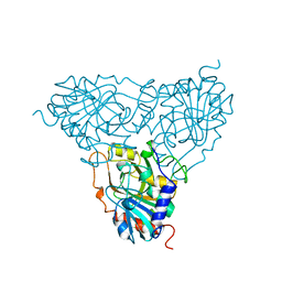 Molmil generated image of 1pbn