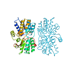 Molmil generated image of 1pea