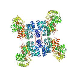Molmil generated image of 1pjl