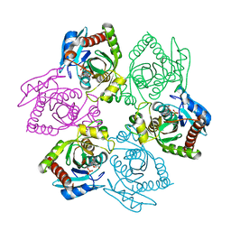 Molmil generated image of 1pr1