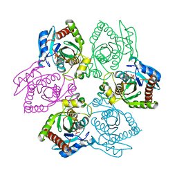 Molmil generated image of 1pr6