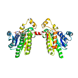 Molmil generated image of 1pr9