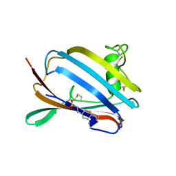 Molmil generated image of 1pu5