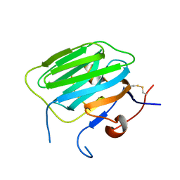 Molmil generated image of 1pz9