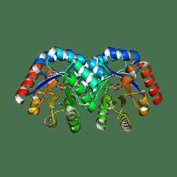 Molmil generated image of 1q6q