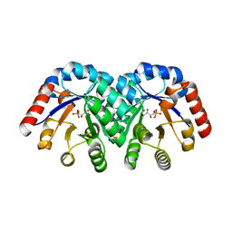 Molmil generated image of 1q6r