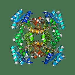 Molmil generated image of 1q7b