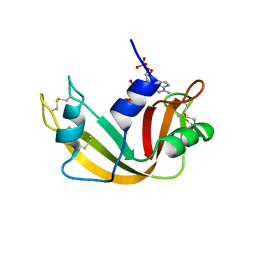 Molmil generated image of 1qhc