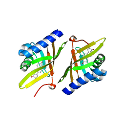 Molmil generated image of 1qjg
