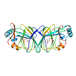 Molmil generated image of 1qy4