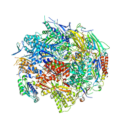 Molmil generated image of 1r5u