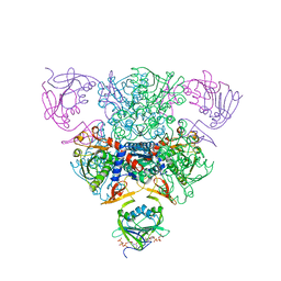Molmil generated image of 1rae